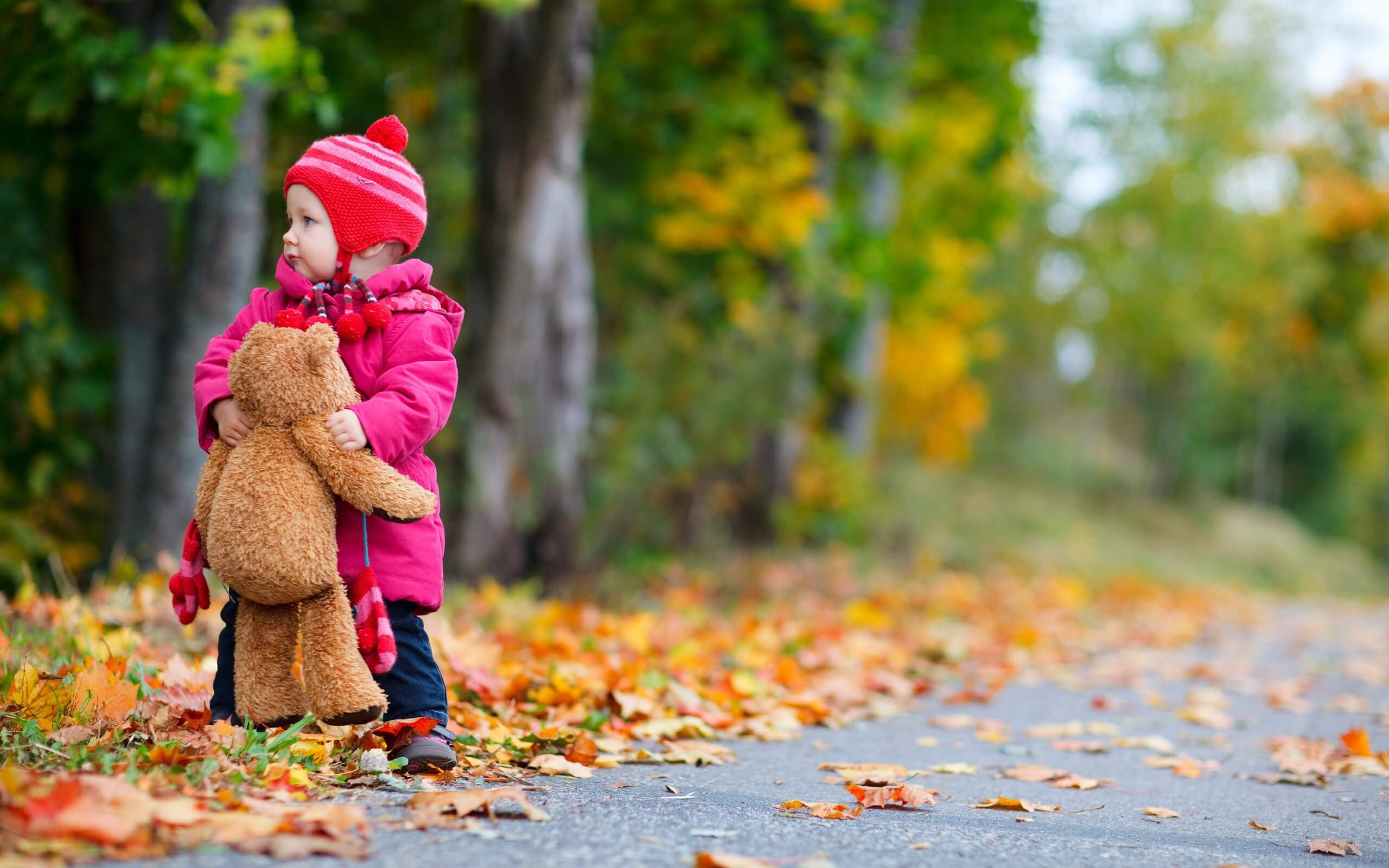 6978327-child-girl-bear-toy-autumn-leaves-nature-photo